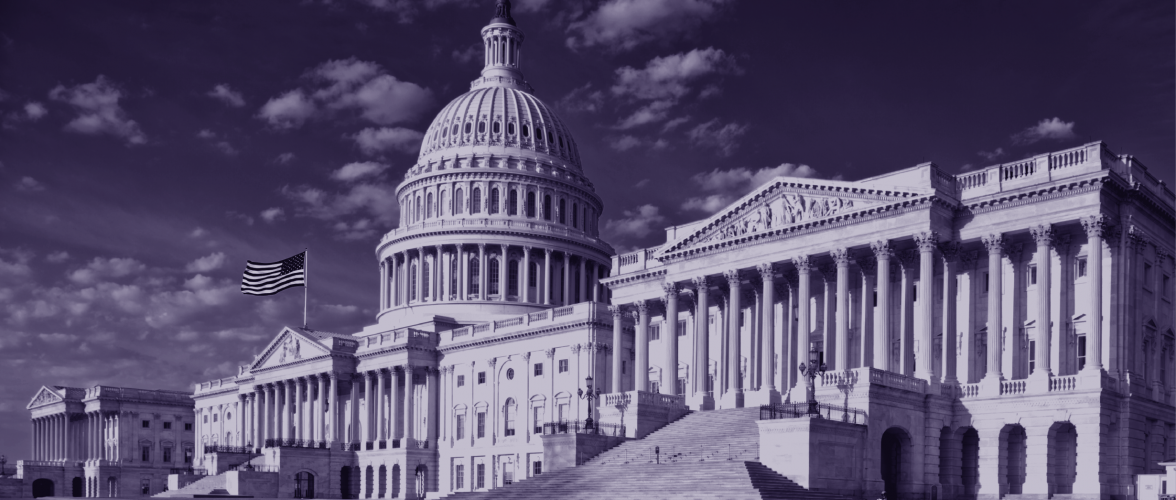 """2020 Post-Election Outlook on a """"Purple"""" Congress"""