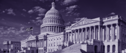 "2020 Post-Election Outlook on a ""Purple"" Congress"